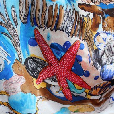 stella marina, particolare